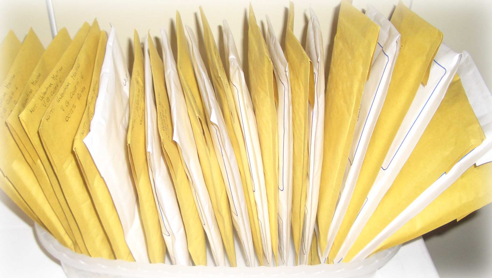 pacchetti